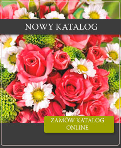 Zamów katalog pdf